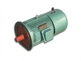 电磁制动电机